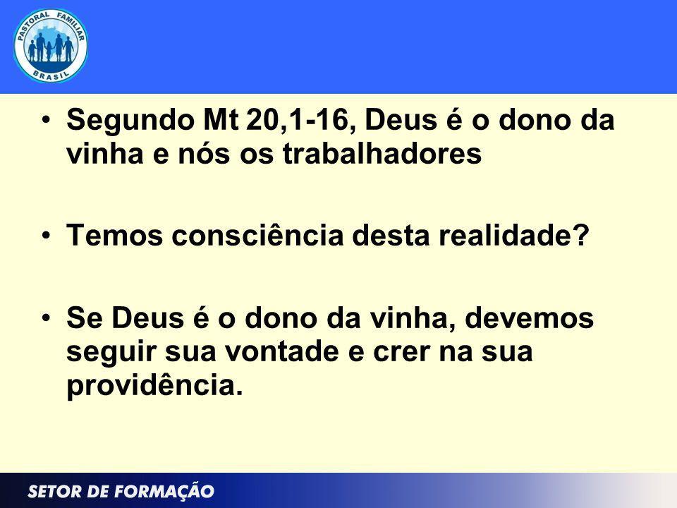 Segundo Mt 20,1-16, Deus é o dono da vinha e nós os trabalhadores Temos consciência desta realidade? Se Deus é o dono da vinha, devemos seguir sua von