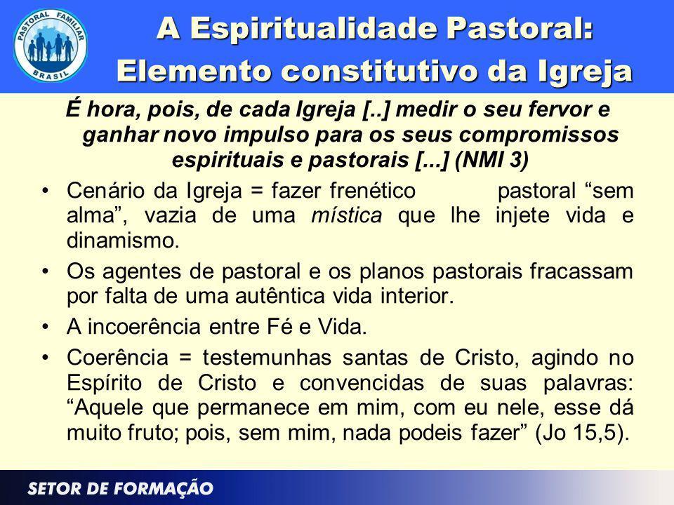A Espiritualidade Pastoral: Elemento constitutivo da Igreja É hora, pois, de cada Igreja [..] medir o seu fervor e ganhar novo impulso para os seus co