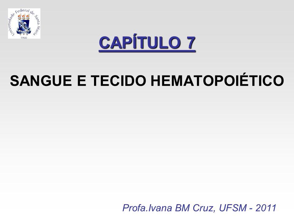 CAPÍTULO 7 CAPÍTULO 7 SANGUE E TECIDO HEMATOPOIÉTICO Profa.Ivana BM Cruz, UFSM - 2011