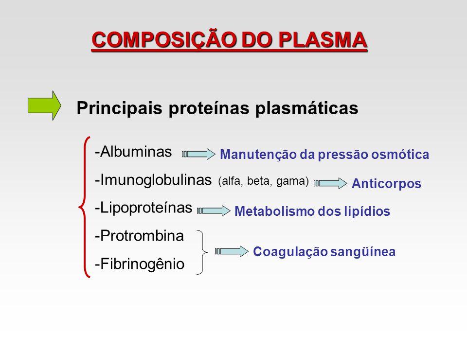 COMPOSIÇÃO DO PLASMA Principais proteínas plasmáticas -Albuminas -Imunoglobulinas (alfa, beta, gama) -Lipoproteínas -Protrombina -Fibrinogênio Manuten