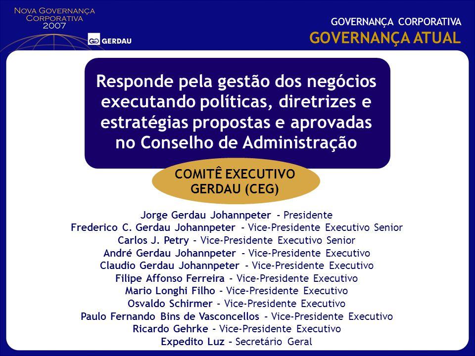 Responde pela gestão dos negócios executando políticas, diretrizes e estratégias propostas e aprovadas no Conselho de Administração Jorge Gerdau Johan