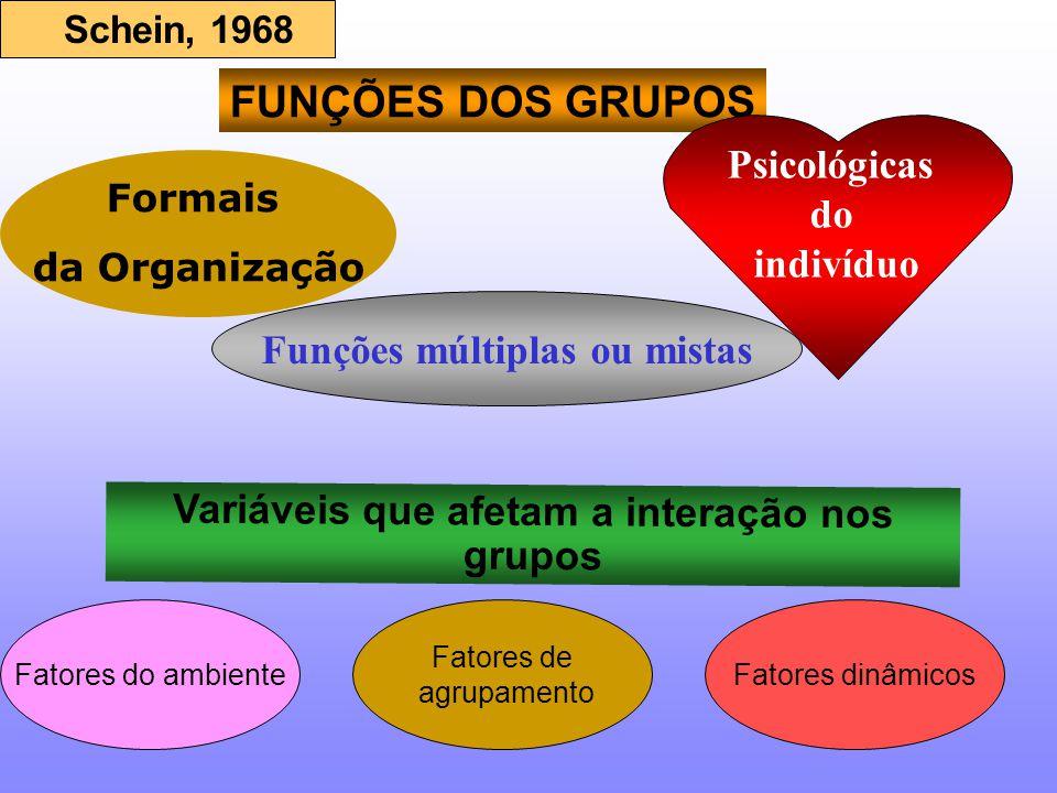 FUNÇÕES DOS GRUPOS Formais da Organização Variáveis que afetam a interação nos grupos Psicológicas do indivíduo Funções múltiplas ou mistas Fatores do