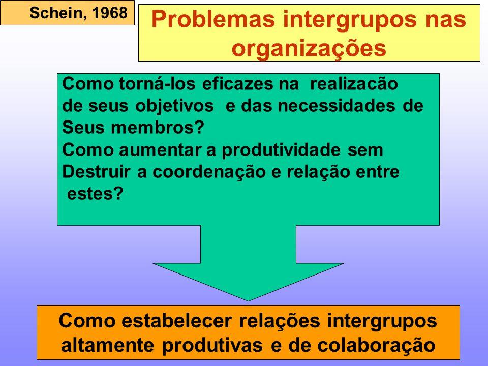 Problemas intergrupos nas organizações Como torná-los eficazes na realizacão de seus objetivos e das necessidades de Seus membros? Como aumentar a pro