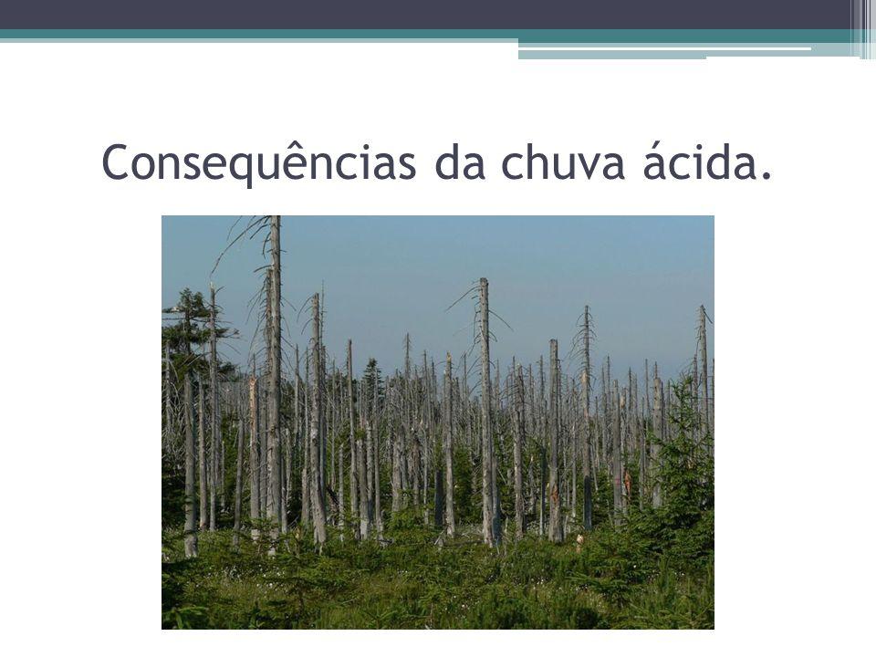 Consequências da chuva ácida.