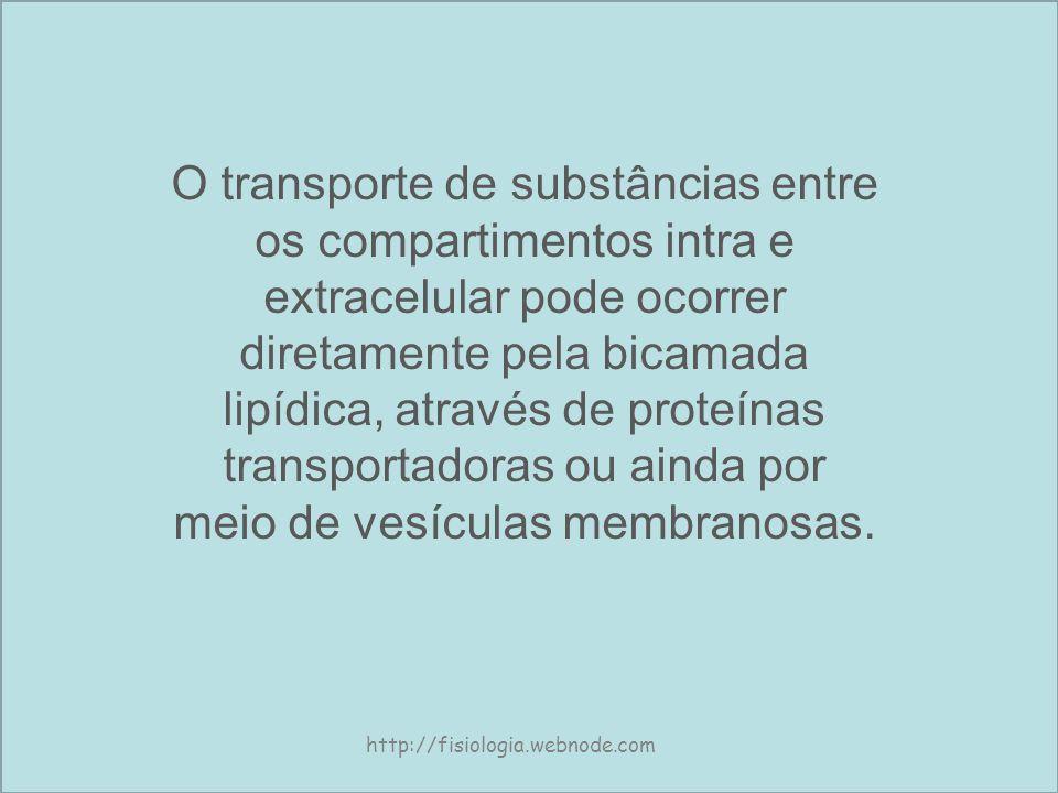 O transporte de substâncias entre os compartimentos intra e extracelular pode ocorrer diretamente pela bicamada lipídica, através de proteínas transportadoras ou ainda por meio de vesículas membranosas.
