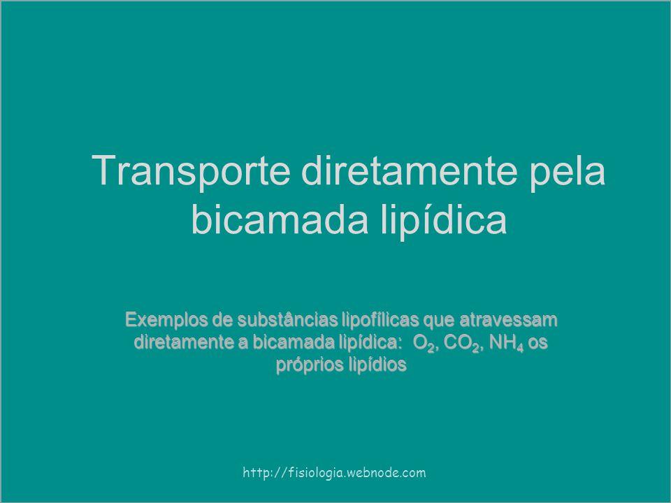 Transporte diretamente pela bicamada lipídica Exemplos de substâncias lipofílicas que atravessam diretamente a bicamada lipídica: O 2, CO 2, NH 4 os próprios lipídios http://fisiologia.webnode.com