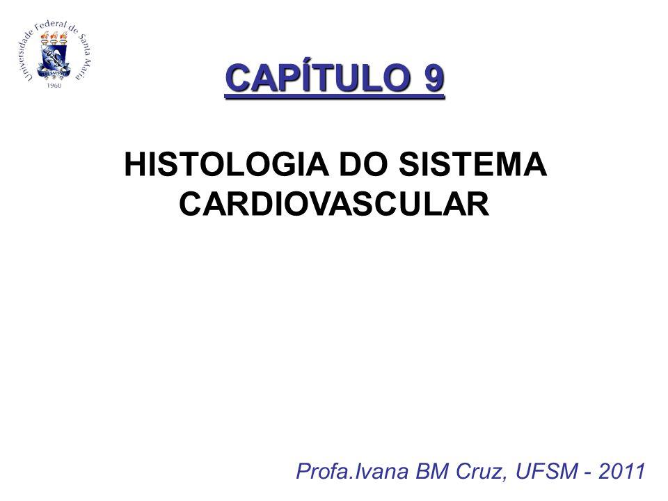 CAPÍTULO 9 CAPÍTULO 9 HISTOLOGIA DO SISTEMA CARDIOVASCULAR Profa.Ivana BM Cruz, UFSM - 2011
