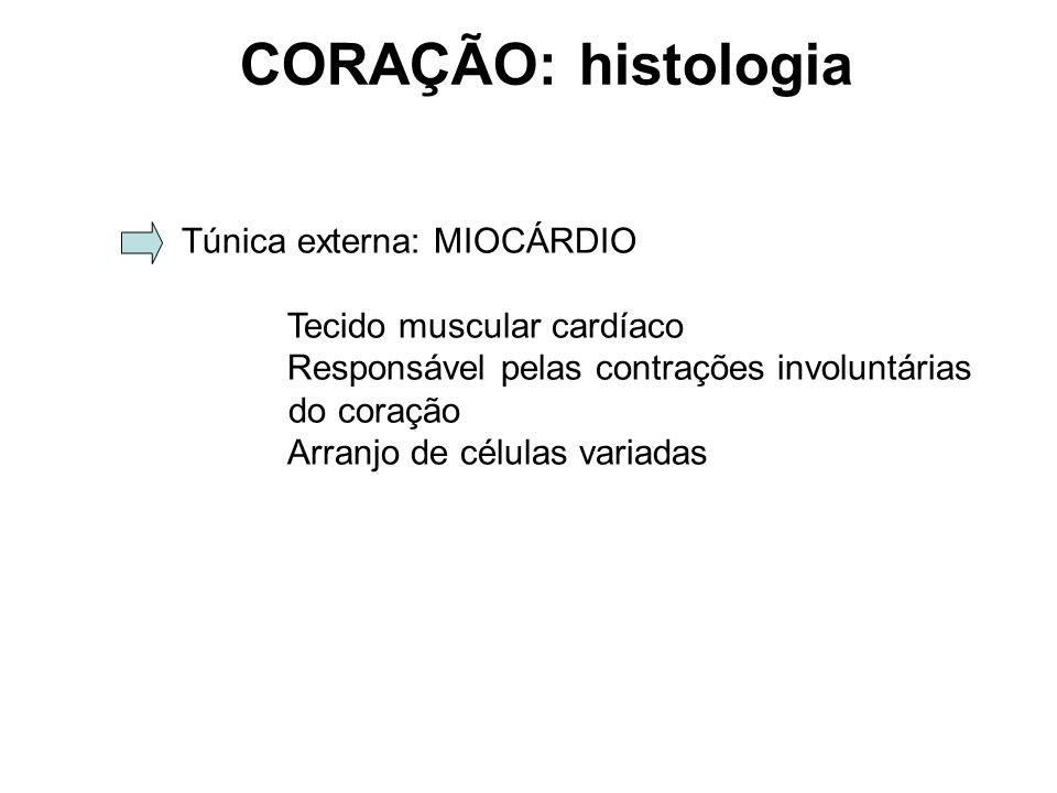 CORAÇÃO: histologia Túnica externa: MIOCÁRDIO Tecido muscular cardíaco Responsável pelas contrações involuntárias do coração Arranjo de células variadas