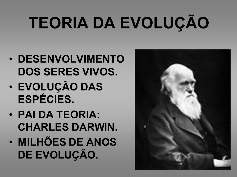 TEORIA DA EVOLUÇÃO DESENVOLVIMENTO DOS SERES VIVOS. EVOLUÇÃO DAS ESPÉCIES. PAI DA TEORIA: CHARLES DARWIN. MILHÕES DE ANOS DE EVOLUÇÃO.