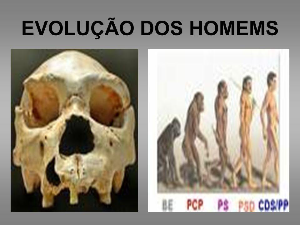 EVOLUÇÃO DOS HOMEMS