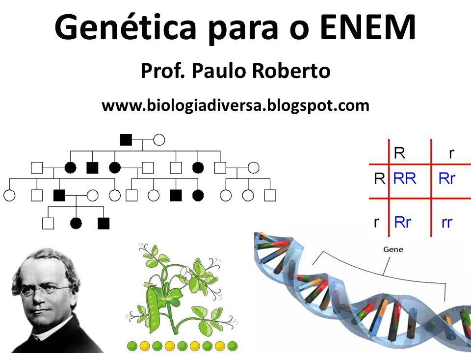 Genética para o ENEM Prof. Paulo Roberto www.biologiadiversa.blogspot.com