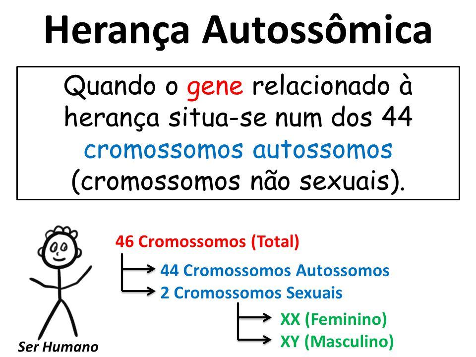 Herança Autossômica Quando o gene relacionado à herança situa-se num dos 44 cromossomos autossomos (cromossomos não sexuais).