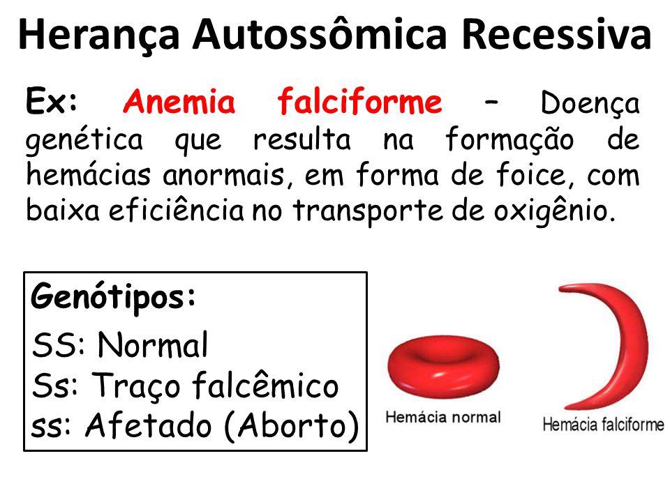 Herança Autossômica Recessiva Ex: Anemia falciforme – Doença genética que resulta na formação de hemácias anormais, em forma de foice, com baixa eficiência no transporte de oxigênio.