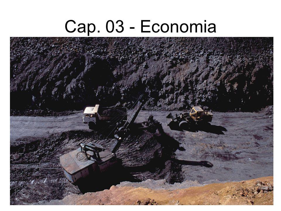 Cap. 03 - Economia