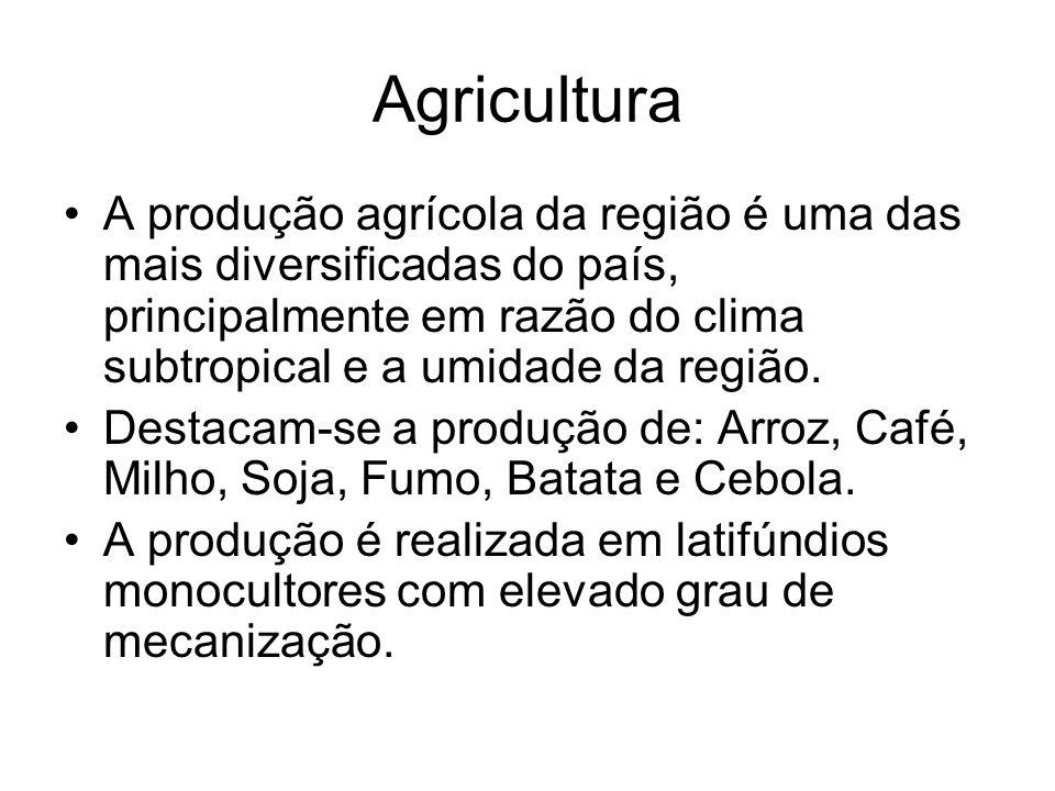 Agricultura A produção agrícola da região é uma das mais diversificadas do país, principalmente em razão do clima subtropical e a umidade da região. D