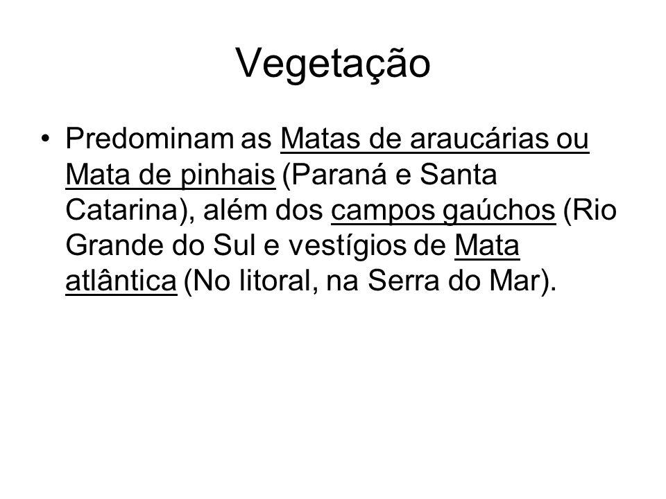 Vegetação Predominam as Matas de araucárias ou Mata de pinhais (Paraná e Santa Catarina), além dos campos gaúchos (Rio Grande do Sul e vestígios de Ma