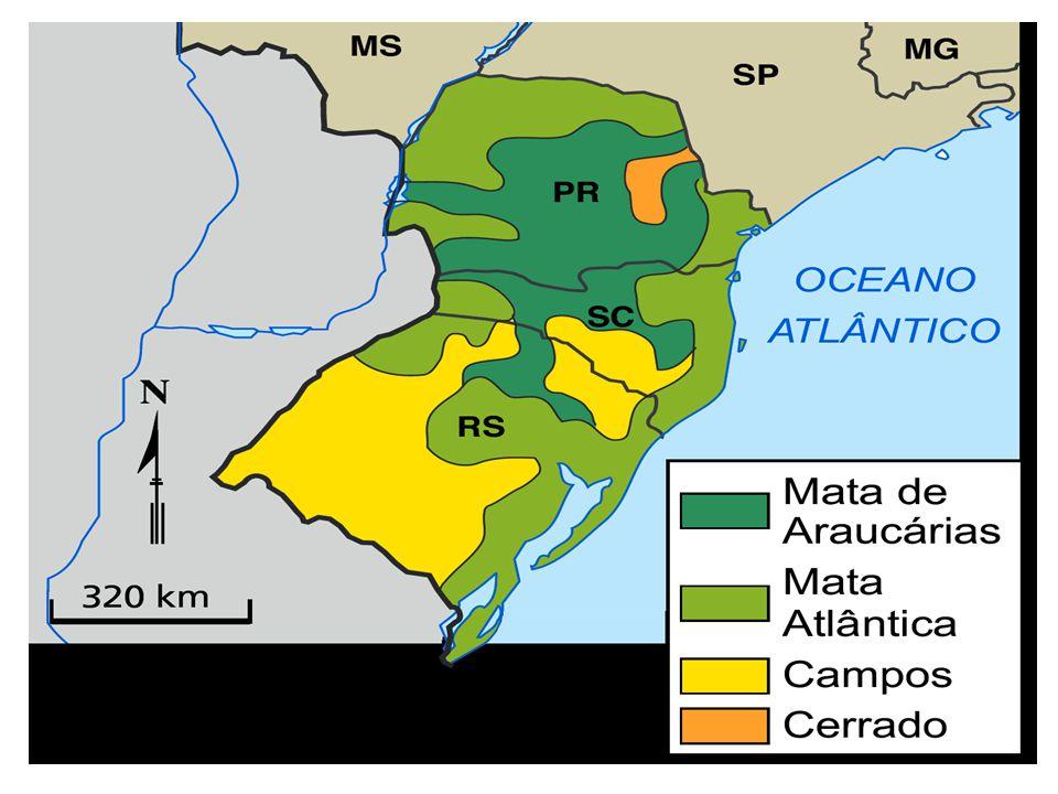 Relevo e Hidrografia A maior parte da região Sul é composta por Planaltos, representados por serras e chapadas, representando as maiores altitudes da região.
