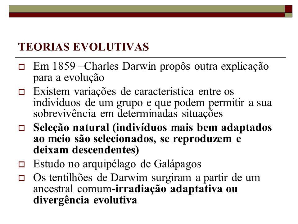TEORIAS EVOLUTIVAS Em 1859 –Charles Darwin propôs outra explicação para a evolução Existem variações de característica entre os indivíduos de um grupo e que podem permitir a sua sobrevivência em determinadas situações Seleção natural (indivíduos mais bem adaptados ao meio são selecionados, se reproduzem e deixam descendentes) Estudo no arquipélago de Galápagos Os tentilhões de Darwim surgiram a partir de um ancestral comum-irradiação adaptativa ou divergência evolutiva