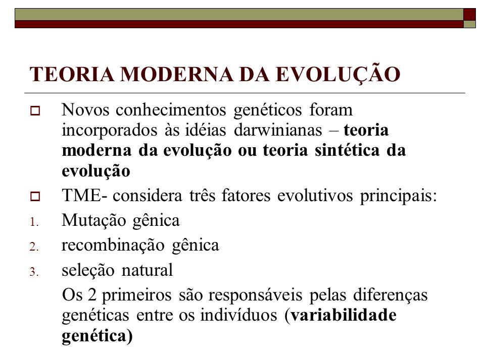 TEORIA MODERNA DA EVOLUÇÃO Novos conhecimentos genéticos foram incorporados às idéias darwinianas – teoria moderna da evolução ou teoria sintética da evolução TME- considera três fatores evolutivos principais: 1.