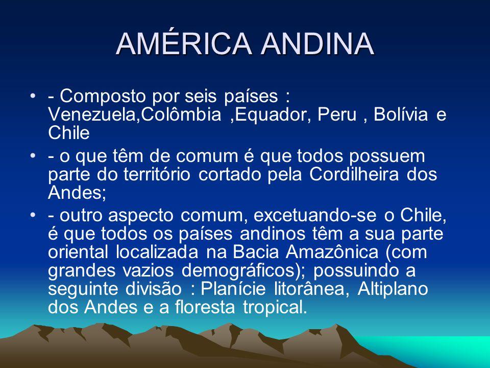 AMÉRICA ANDINA - Composto por seis países : Venezuela,Colômbia,Equador, Peru, Bolívia e Chile - o que têm de comum é que todos possuem parte do territ