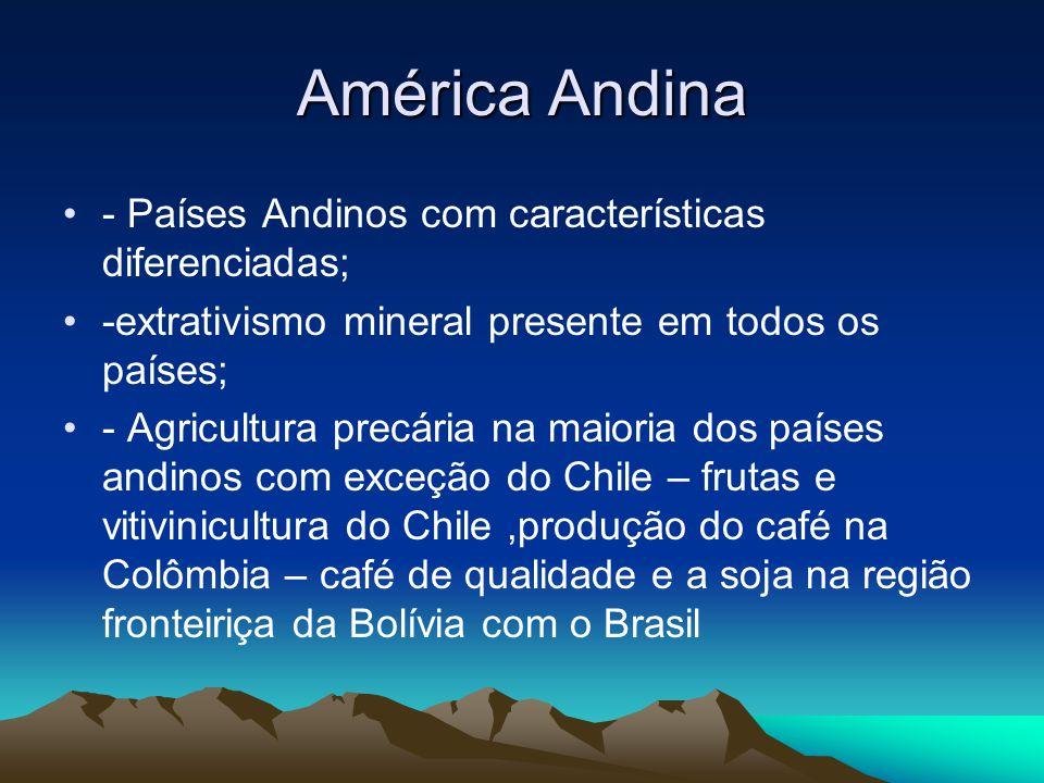 América Andina - Países Andinos com características diferenciadas; -extrativismo mineral presente em todos os países; - Agricultura precária na maiori
