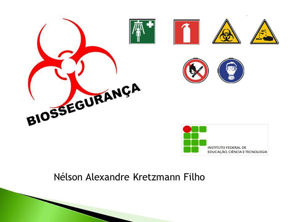 Nélson Alexandre Kretzmann Filho
