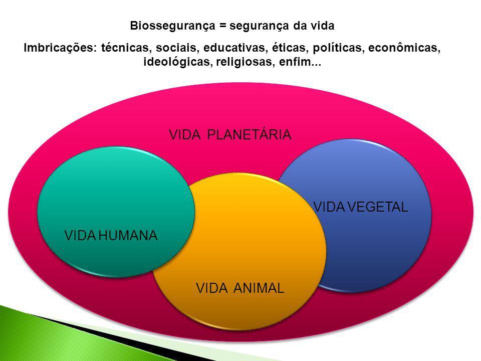 Biossegurança = segurança da vida Imbricações: técnicas, sociais, educativas, éticas, políticas, econômicas, ideológicas, religiosas, enfim... VIDA HU
