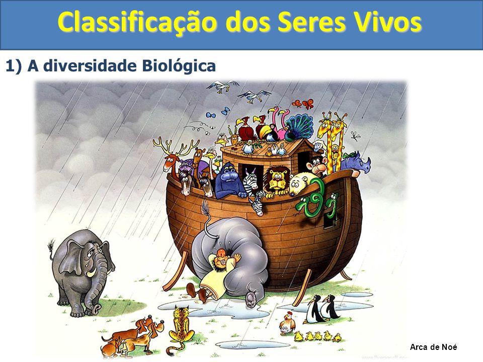 Classificação dos Seres Vivos 1) A diversidade Biológica Árvore Evolutiva