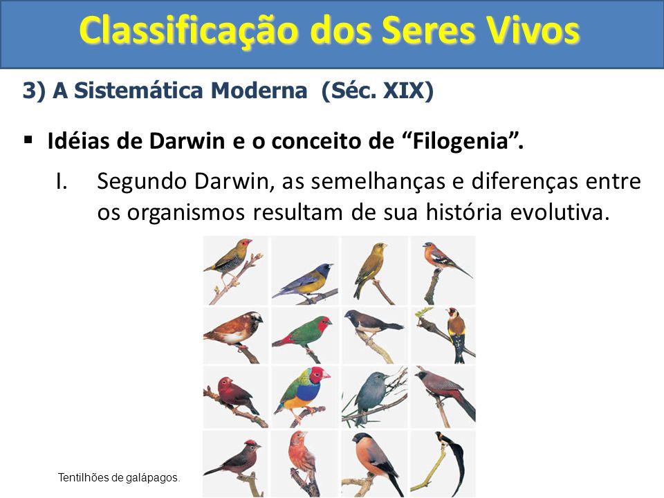 Classificação dos Seres Vivos 3) A Sistemática Moderna (Séc. XIX) Idéias de Darwin e o conceito de Filogenia. I.Segundo Darwin, as semelhanças e difer