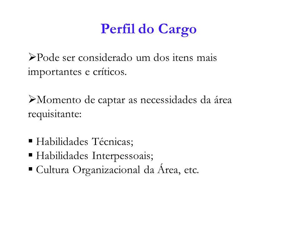 Perfil do Cargo Pode ser considerado um dos itens mais importantes e críticos. Momento de captar as necessidades da área requisitante: Habilidades Téc