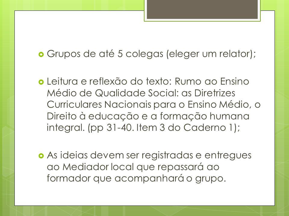 Grupos de até 5 colegas (eleger um relator); Leitura e reflexão do texto: Rumo ao Ensino Médio de Qualidade Social: as Diretrizes Curriculares Nacionais para o Ensino Médio, o Direito à educação e a formação humana integral.