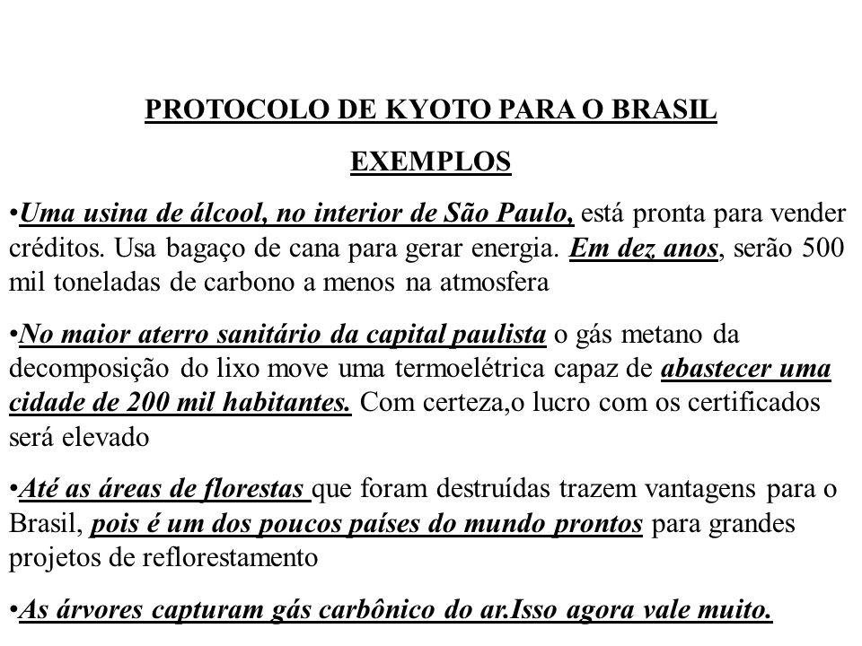 PROTOCOLO DE KYOTO PARA O BRASIL EXEMPLOS Uma usina de álcool, no interior de São Paulo, está pronta para vender créditos. Usa bagaço de cana para ger