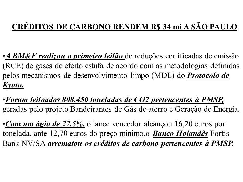 CRÉDITOS DE CARBONO RENDEM R$ 34 mi A SÃO PAULO A BM&F realizou o primeiro leilão de reduções certificadas de emissão (RCE) de gases de efeito estufa de acordo com as metodologias definidas pelos mecanismos de desenvolvimento limpo (MDL) do Protocolo de Kyoto.