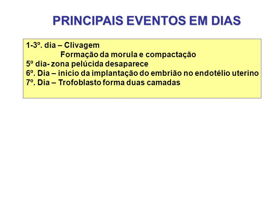 PRINCIPAIS EVENTOS EM DIAS 1-3º.