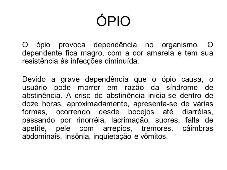 ÓPIO O ópio provoca dependência no organismo.