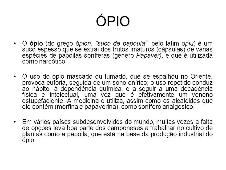 ÓPIO O ópio (do grego ópion, suco de papoula , pelo latim opiu) é um suco espesso que se extrai dos frutos imaturos (cápsulas) de várias espécies de papoilas soníferas (gênero Papaver), e que é utilizada como narcótico.
