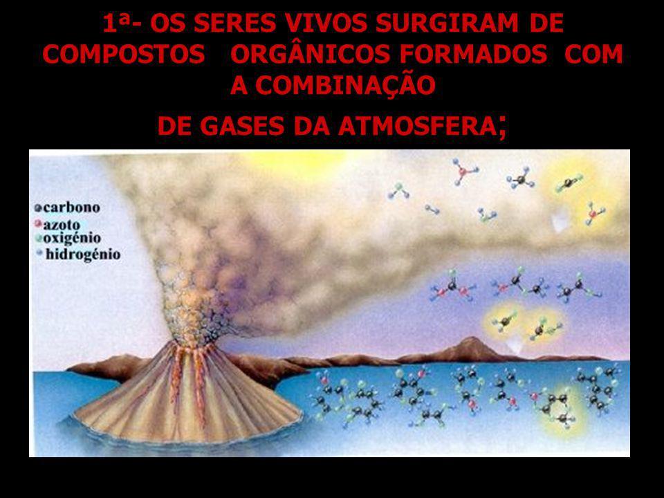 1ª- OS SERES VIVOS SURGIRAM DE COMPOSTOS ORGÂNICOS FORMADOS COM A COMBINAÇÃO DE GASES DA ATMOSFERA ;