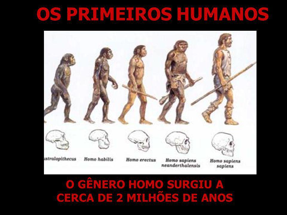 OS PRIMEIROS HUMANOS O GÊNERO HOMO SURGIU A CERCA DE 2 MILHÕES DE ANOS