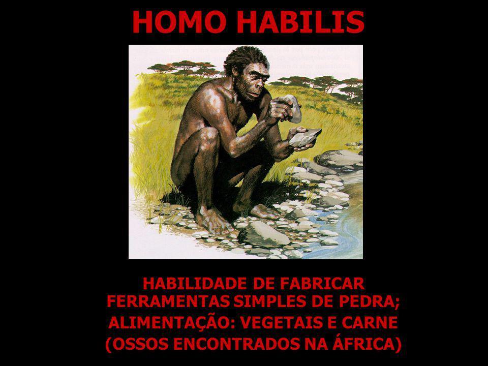 HOMO HABILIS HABILIDADE DE FABRICAR FERRAMENTAS SIMPLES DE PEDRA; ALIMENTAÇÃO: VEGETAIS E CARNE (OSSOS ENCONTRADOS NA ÁFRICA)