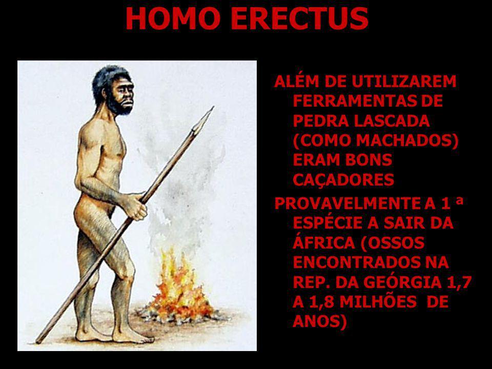 HOMO NEANDERTHALENSIS P ARECIDO COM O SER HUMANO MODERNO ERA CAÇADOR HABITAVA A EUROPA E A ÁSIA OCIDENTAL