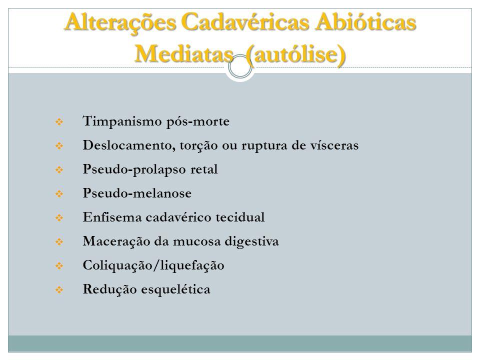 Timpanismo pós-morte Deslocamento, torção ou ruptura de vísceras Pseudo-prolapso retal Pseudo-melanose Enfisema cadavérico tecidual Maceração da mucosa digestiva Coliquação/liquefação Redução esquelética