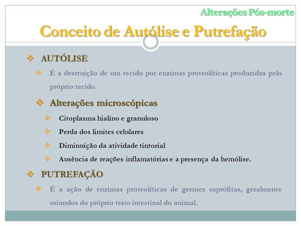 AUTÓLISE AUTÓLISE É a destruição de um tecido por enzimas proteolíticas produzidas pelo próprio tecido.