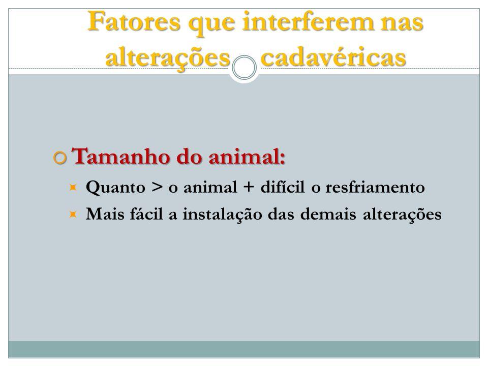 Tamanho do animal: Tamanho do animal: Quanto > o animal + difícil o resfriamento Mais fácil a instalação das demais alterações Fatores que interferem nas alterações cadavéricas