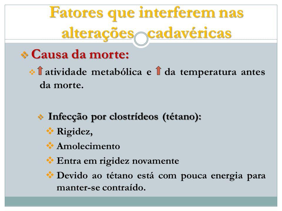 Causa da morte: Causa da morte: atividade metabólica e da temperatura antes da morte.
