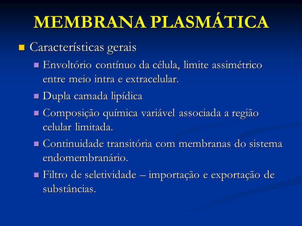MEMBRANA PLASMÁTICA Características gerais Características gerais Envoltório contínuo da célula, limite assimétrico entre meio intra e extracelular. E
