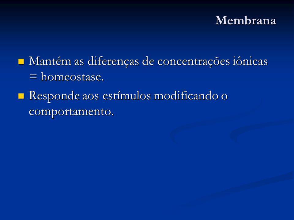 Membrana Mantém as diferenças de concentrações iônicas = homeostase. Mantém as diferenças de concentrações iônicas = homeostase. Responde aos estímulo