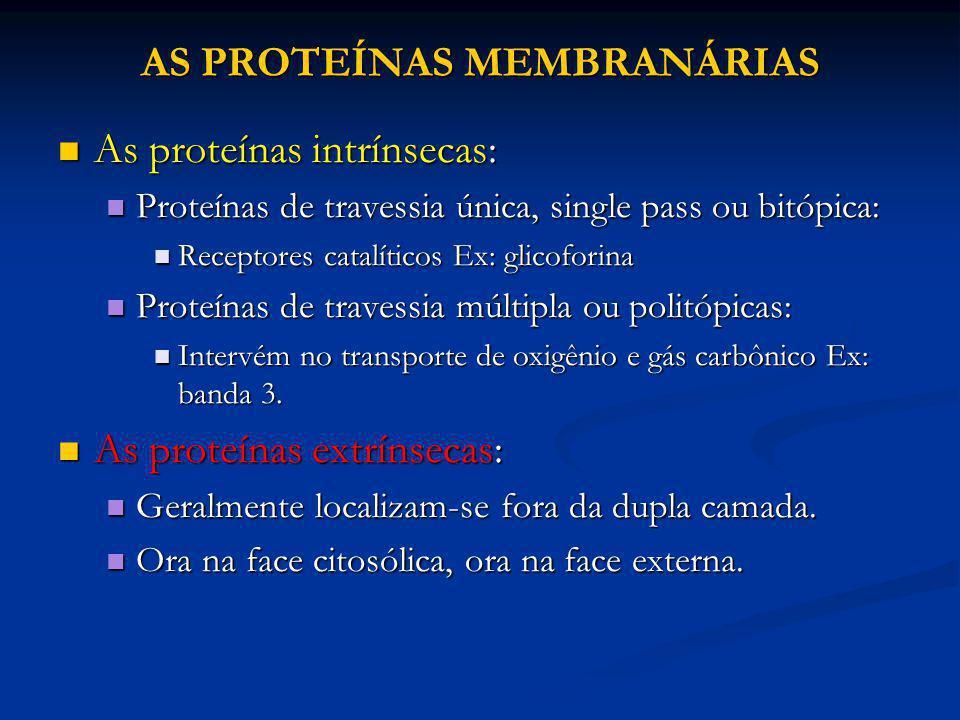 AS PROTEÍNAS MEMBRANÁRIAS As proteínas intrínsecas: As proteínas intrínsecas: Proteínas de travessia única, single pass ou bitópica: Proteínas de trav