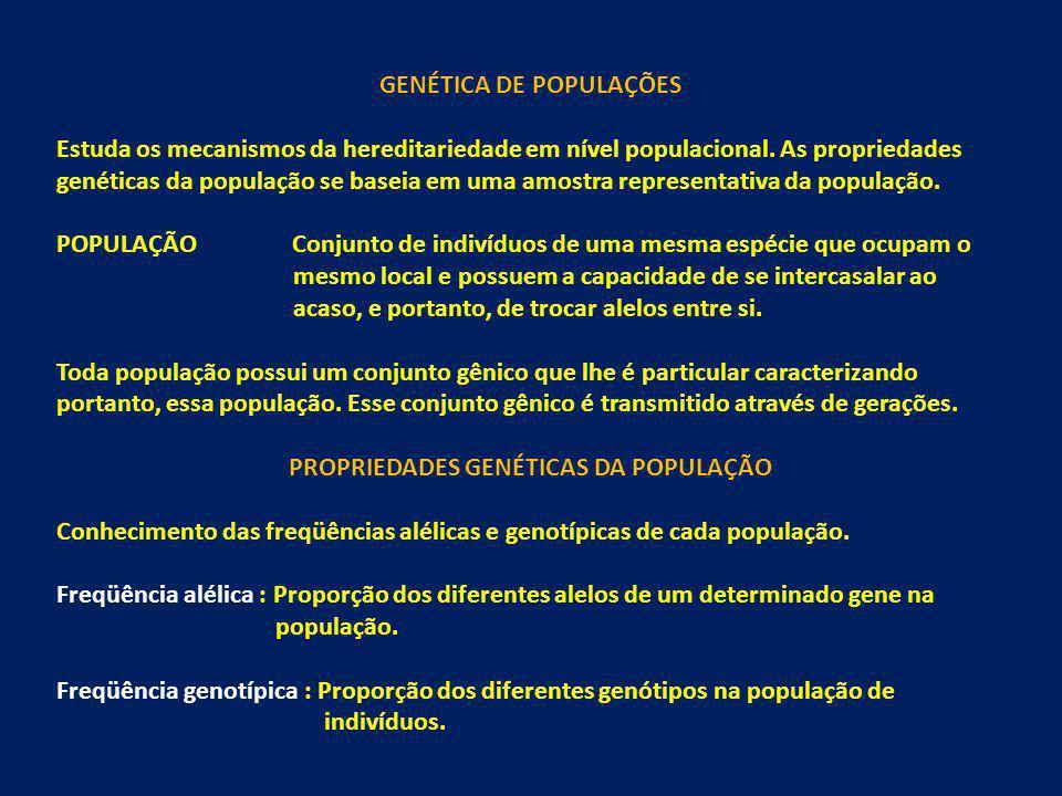 GENÉTICA DE POPULAÇÕES Estuda os mecanismos da hereditariedade em nível populacional. As propriedades genéticas da população se baseia em uma amostra