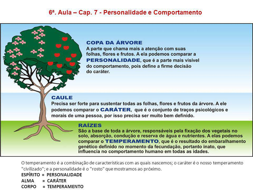 6ª. Aula – Cap. 7 - Personalidade e Comportamento O temperamento é a combinação de características com as quais nascemos; o caráter é o nosso temperam