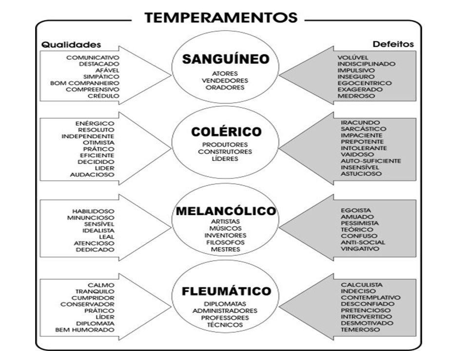 Teorias da Personalidade 1.Teoria dos Traços – Baseada em fundamentos biológicos ( Big Five ) - uma visão segmentada, cartesiana.